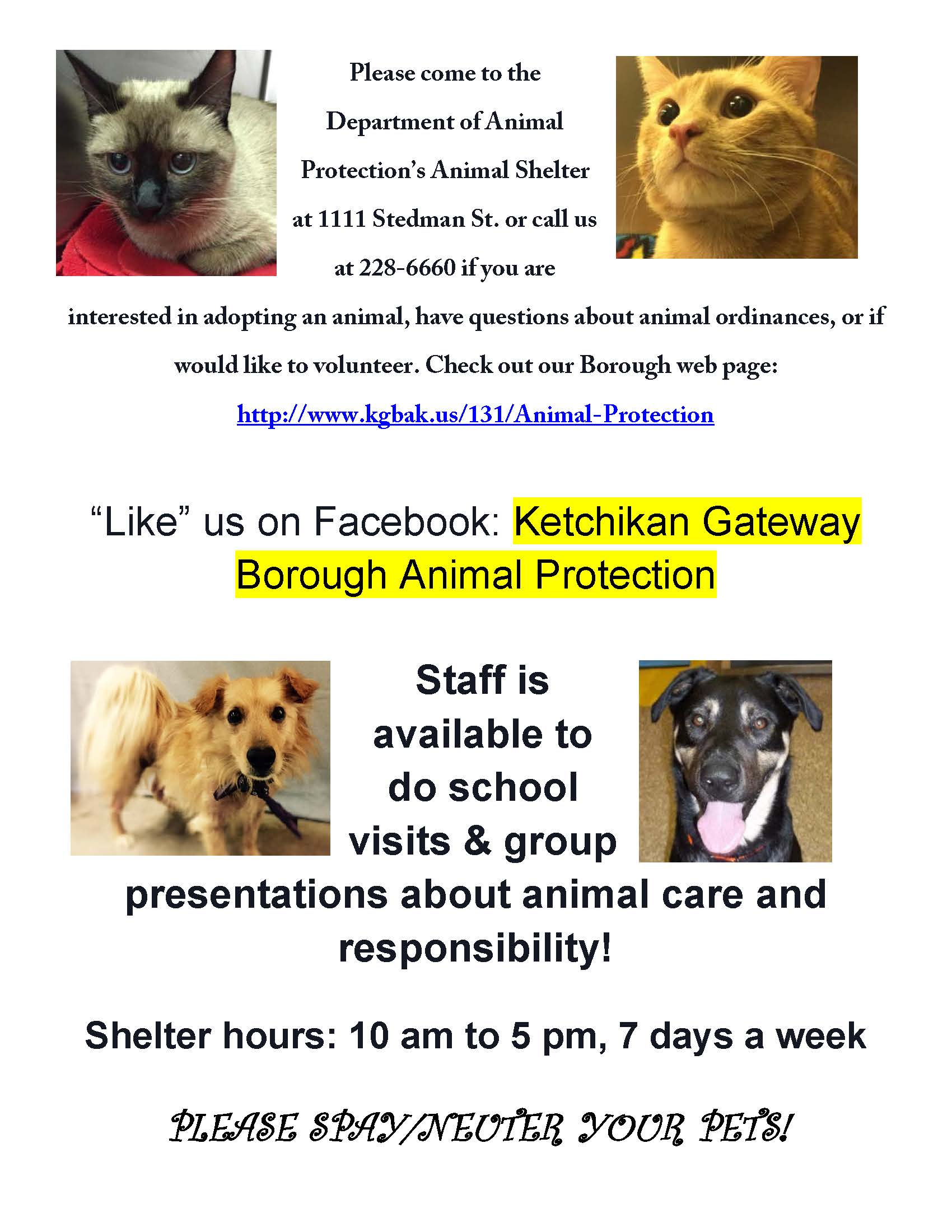 visit animal protection flier