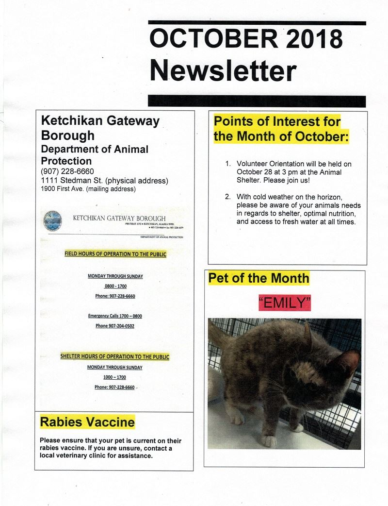 Oct 2018 Newsletter 1