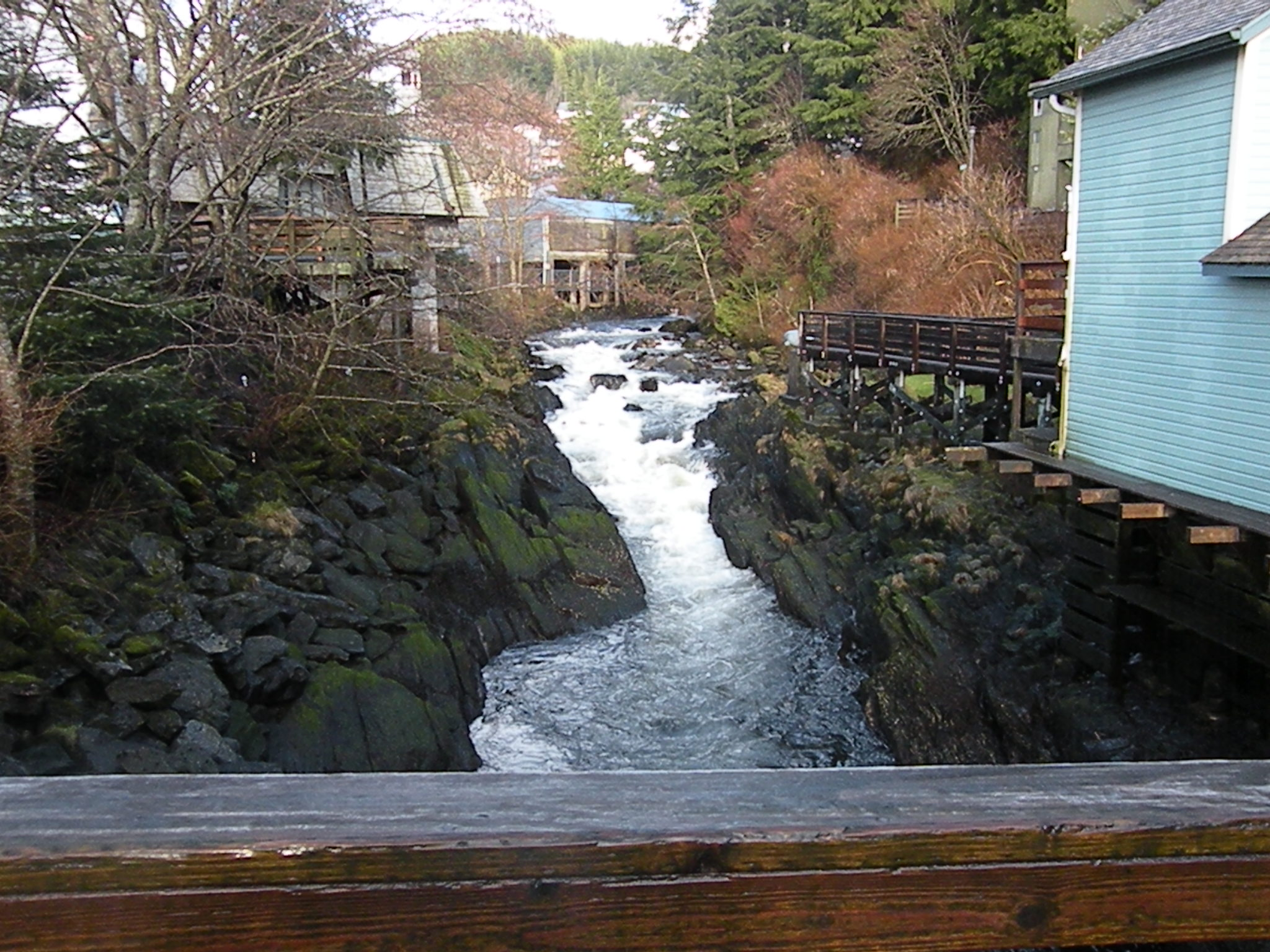 Ketchikan creek upstream from creek street